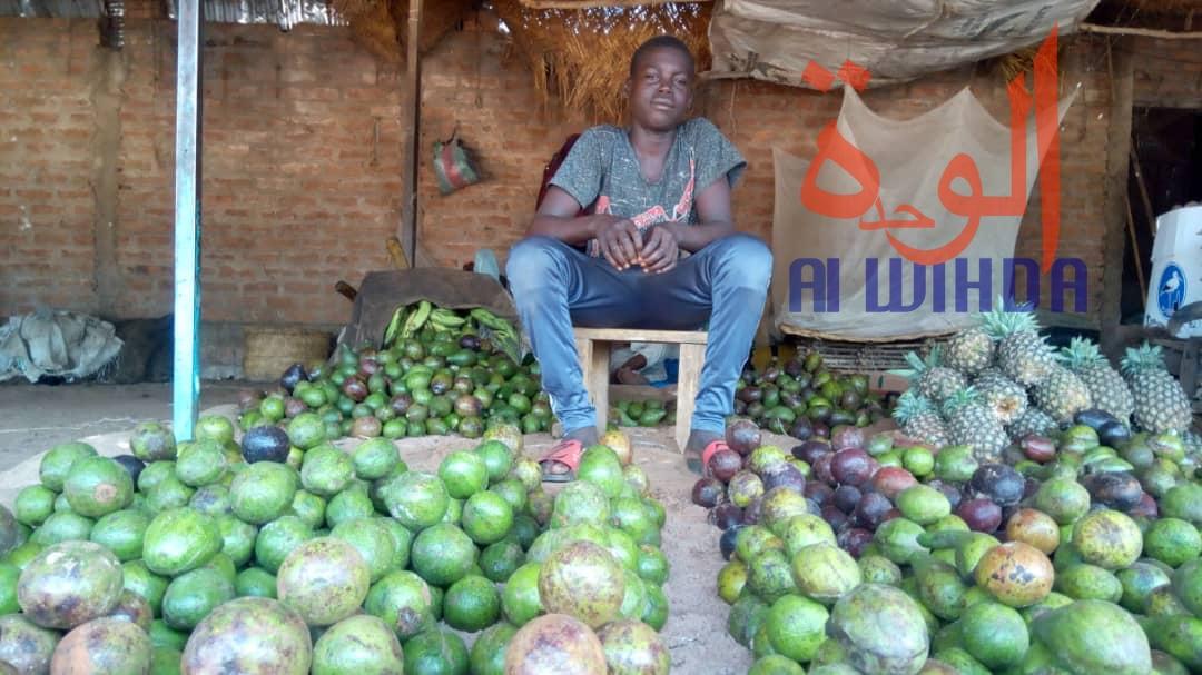 Tchad : au Sud, le désenclavement favorise l'activité économique avec le Cameroun