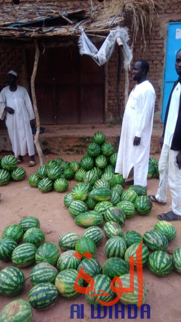 Tchad : à Goz Beida, le marché du dimanche prospère malgré l'état d'urgence. ©Alwihda Info