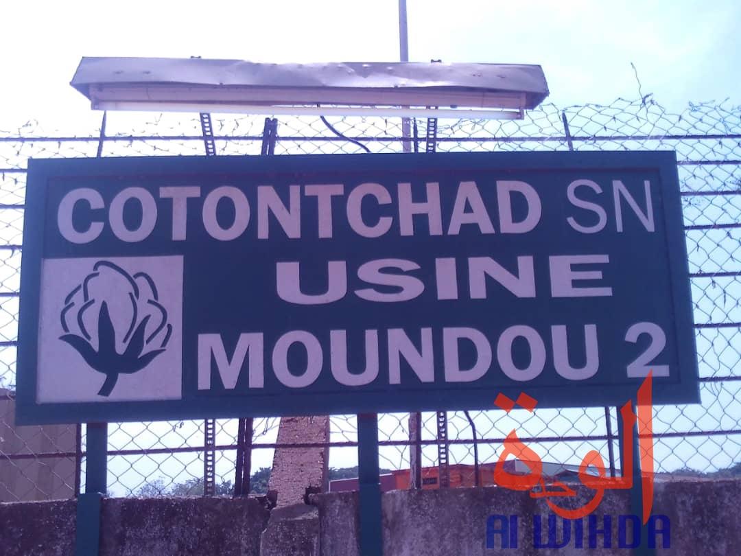 Tchad : le ministre d'Etat Kalzeubet Pahimi lance la campagne cotonnière à Moundou