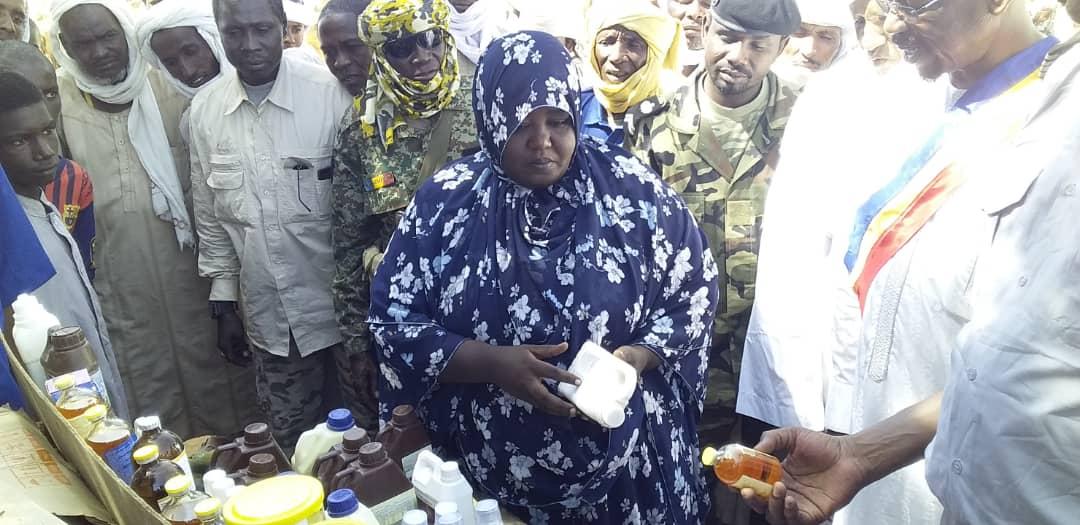 Tchad : au marché de bétail d'Ati, une sensibilisation pour la scolarisation des enfants. © Alwihda Info