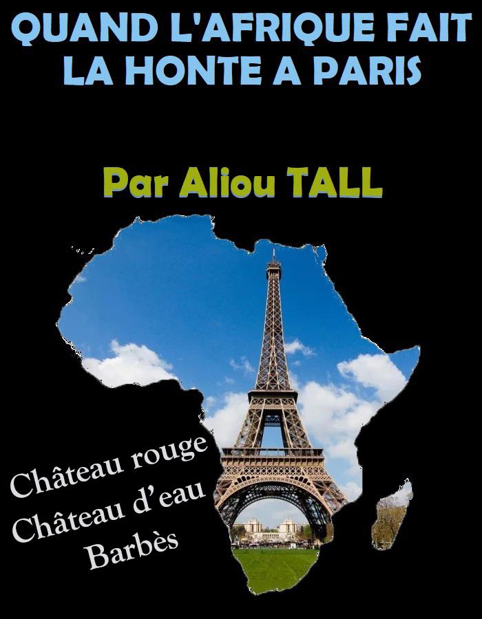Quand l'Afrique fait la honte à Paris (Par Aliou TALL).
