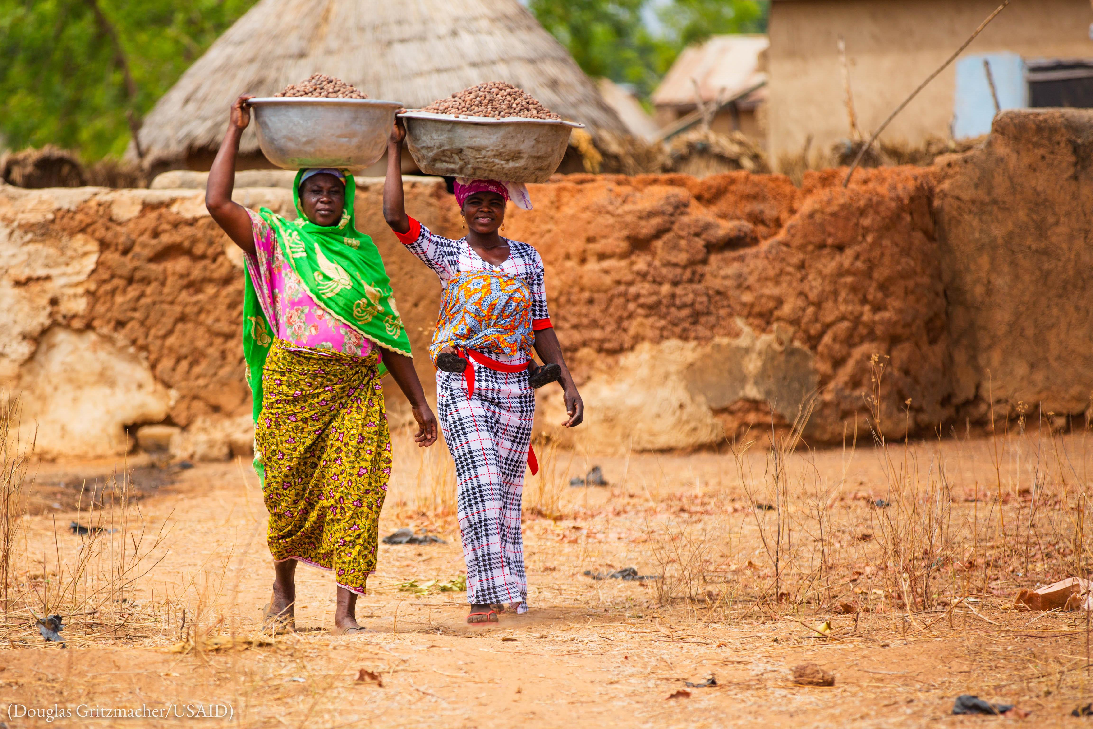 Des femmes transportent des noix vers le lieu où elles seront transformées. (Douglas Gritzmacher/USAID)