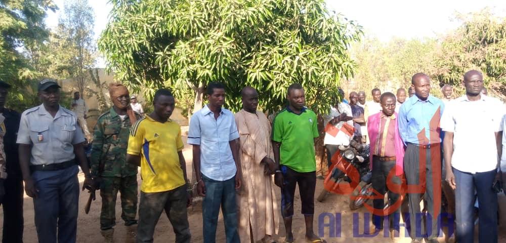 Tchad : 4 malfrats appréhendés à Pala, 5 motos récupérées. © Foka Mapagne/Alwihda Info