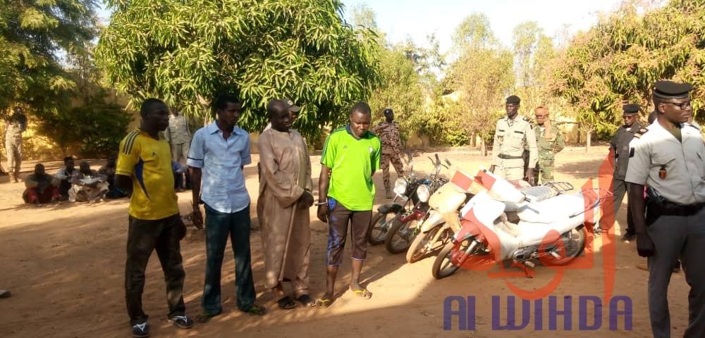 Tchad : 4 malfrats appréhendés à Pala, 5 motos récupérées