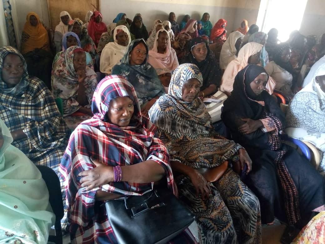 Tchad : au Guéra, les femmes s'activent pour la SENAFET. © Alwihda Info