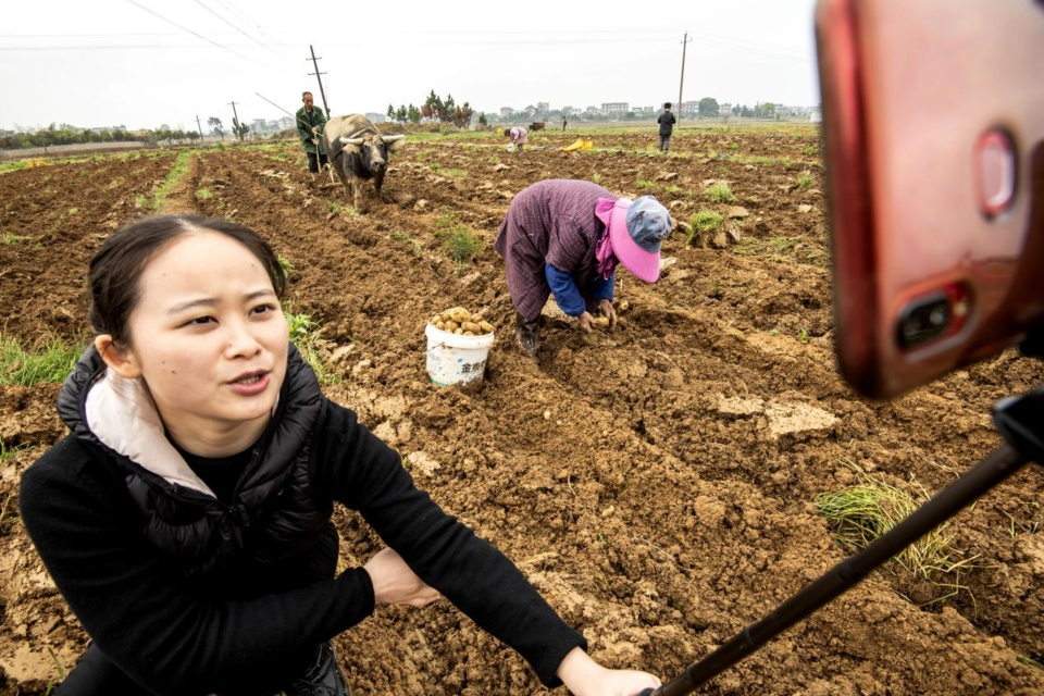 A TV host from the TV station of Xingan county, Ji'an, Jiangxi province livestreams an interview with Huang Shaoming, a potato planter in Luojiaxiang village, Jiebu township, to help him sell potatoes online, March 18. Photo by Li Fusun, People's Daily Online
