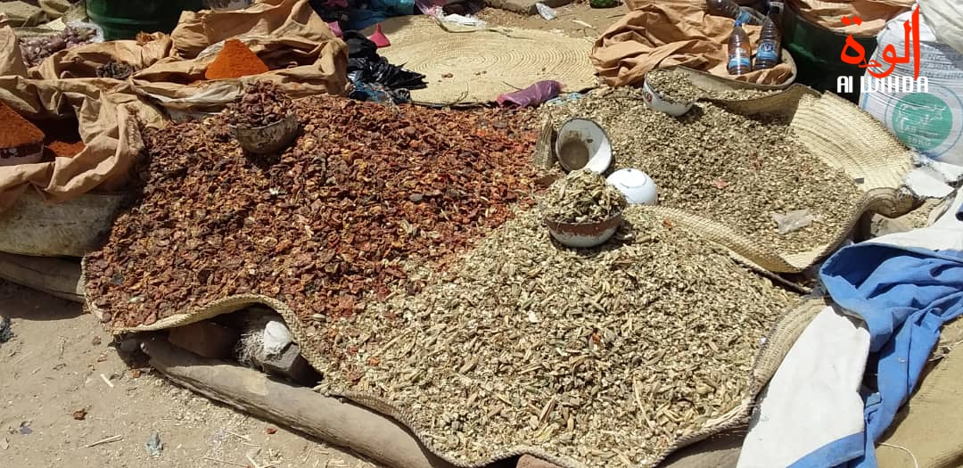 Des aliments dans un marché au Tchad. © Hassan Djidda/Alwihda Info