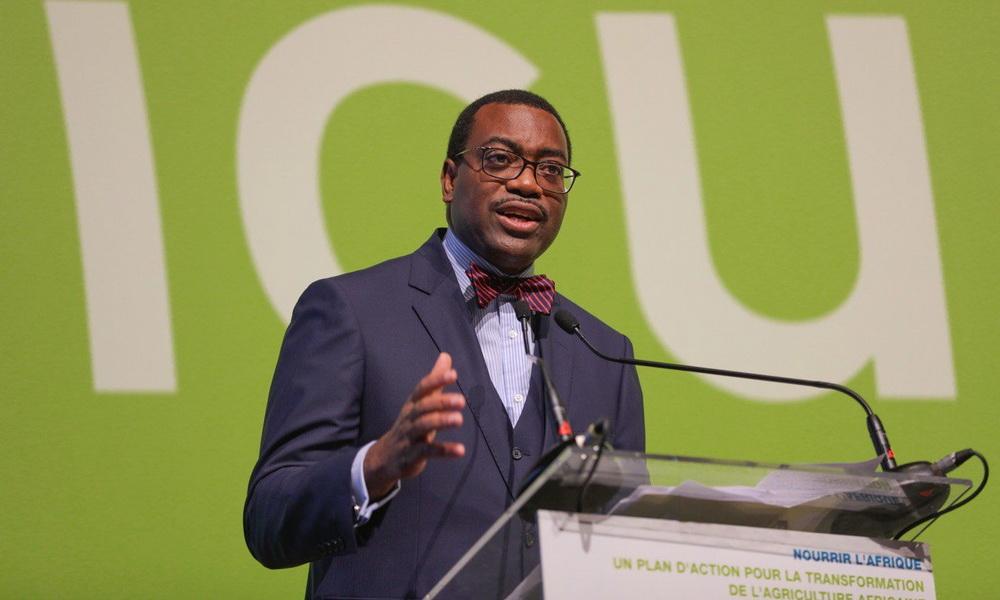 Akinwumi A. Adesina, président du Groupe de la Banque africaine de développement. © DR