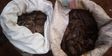 Cameroun/Dimako : une femme arrêtée avec deux sacs d'écailles de pangolin