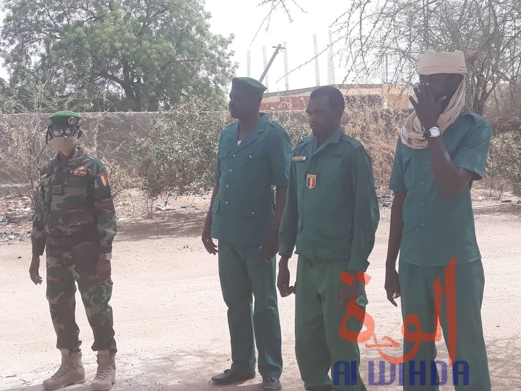 Tchad : 600 sacs de charbon et 5 véhicules chargés de bois interceptés au Ouaddaï. © Abba Issa/Alwihda Info