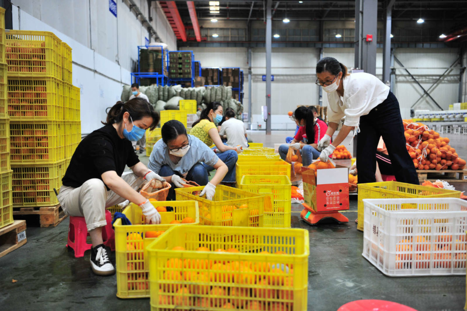 Workers pack oranges for online orders in an e-commerce industrial park in Yiling district, Yichang, Central China's Hubei Province, June 18. (Photo by Zhang Guorong/People's Daily Online)