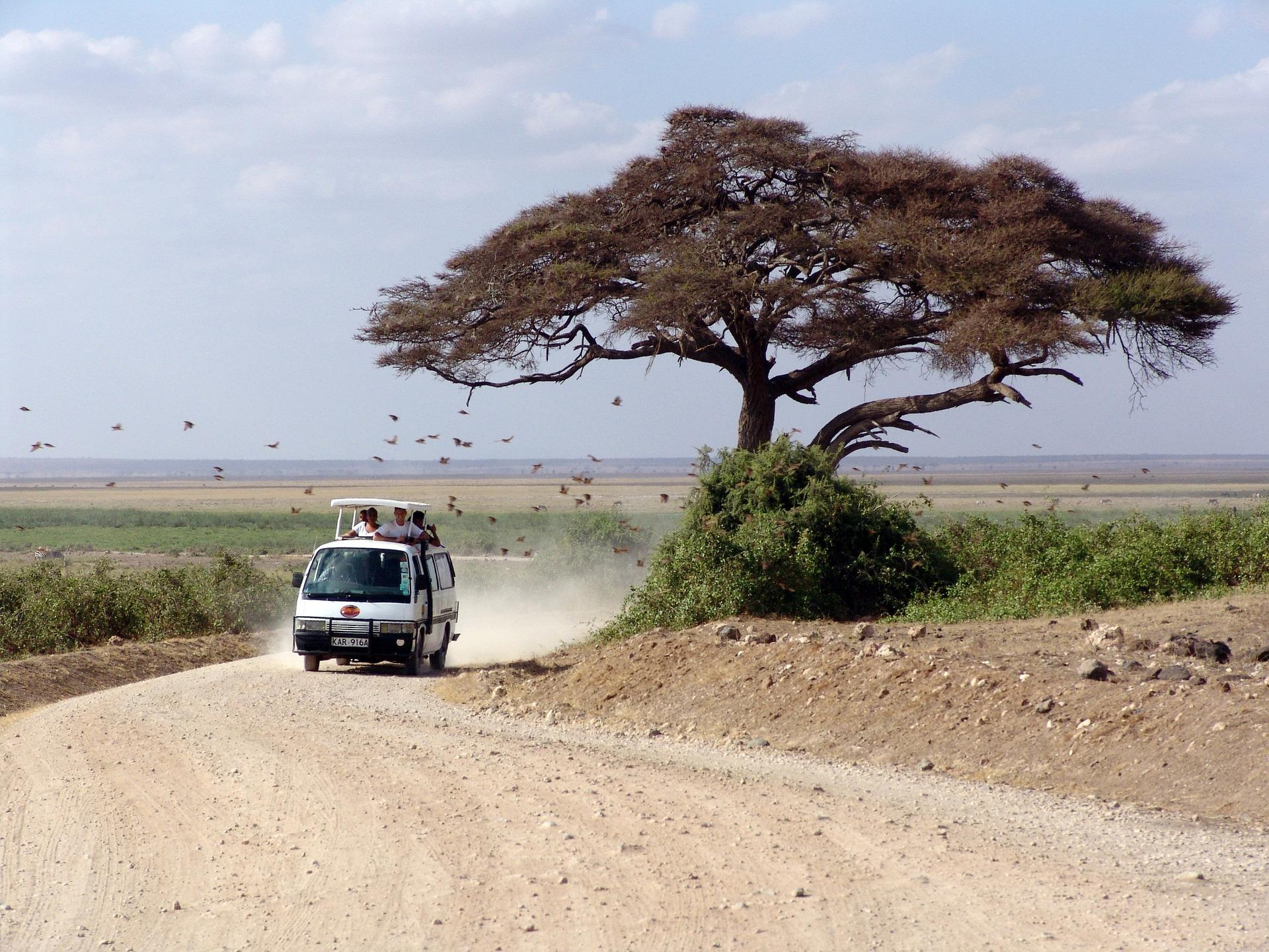 Kenya. © Peggy_Marco/PixaBay