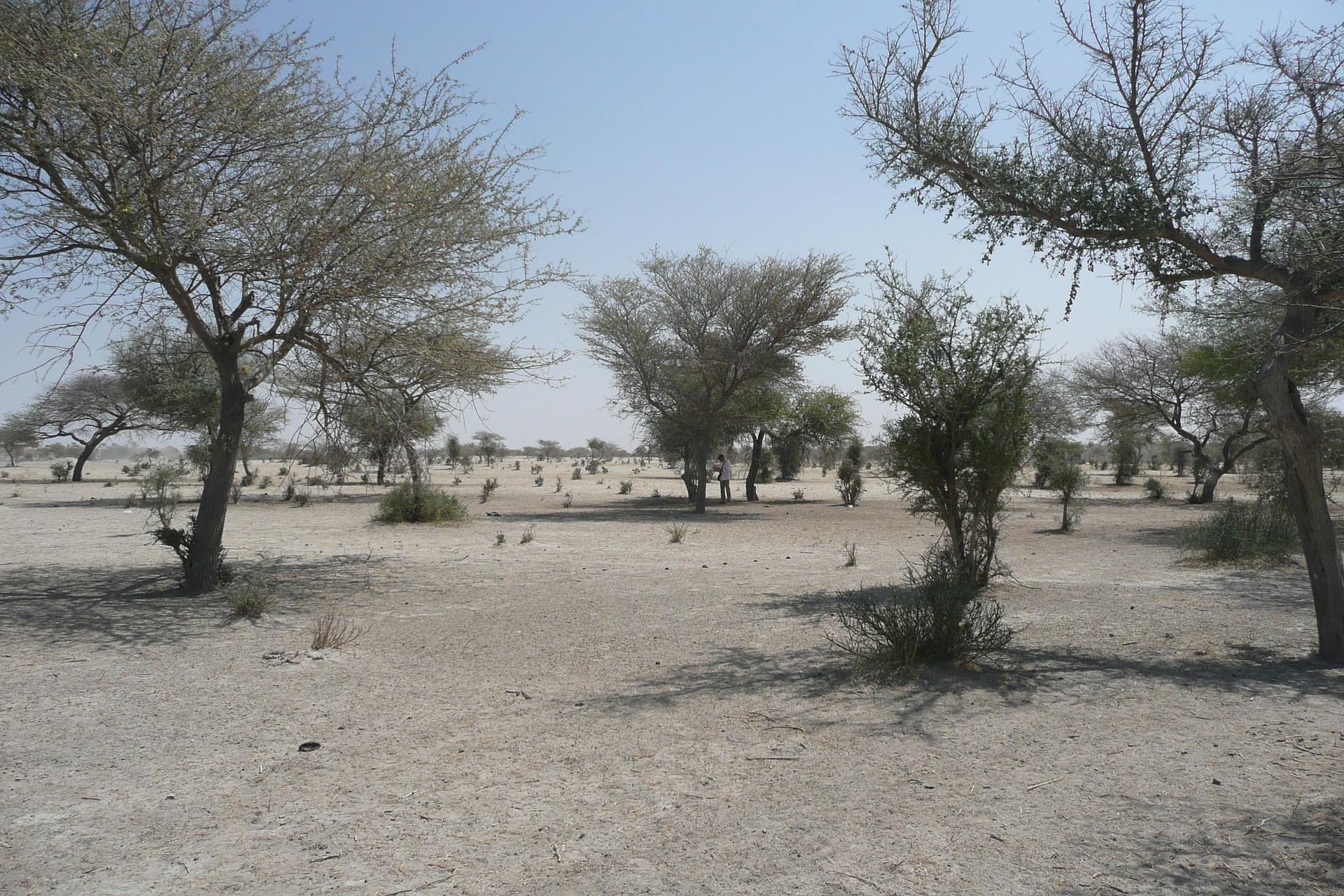 Zone désertique au Sahel. Image d'illustration © Pixabay