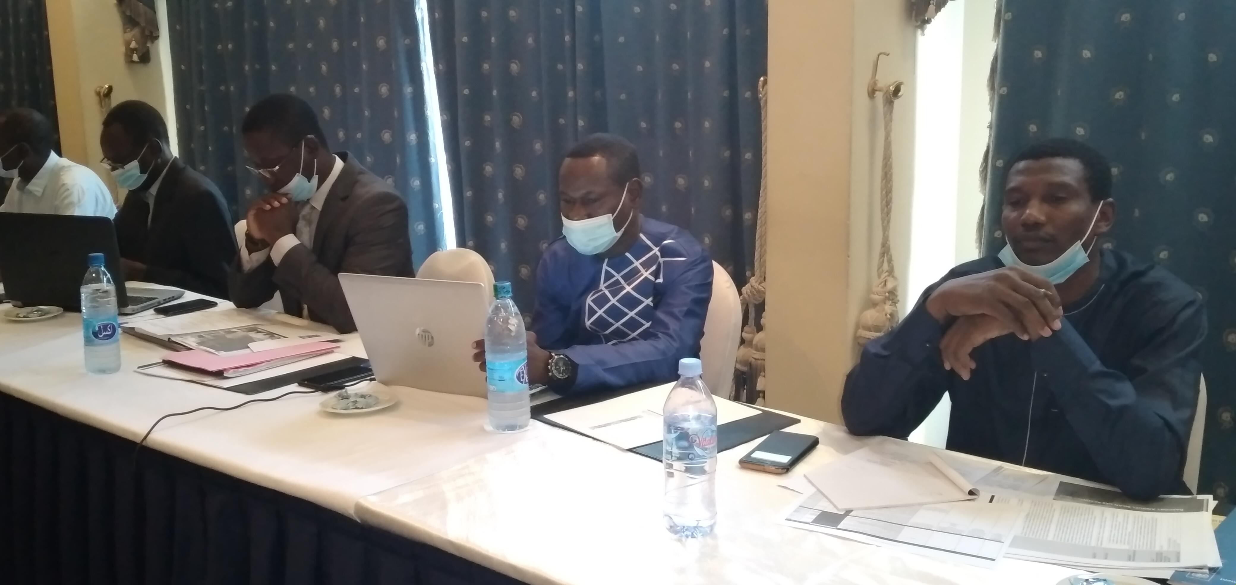 Tchad : trois projets à l'étude pour contrer les menaces environnementales sérieuses. © Ben Kadabio/Alwihda Info