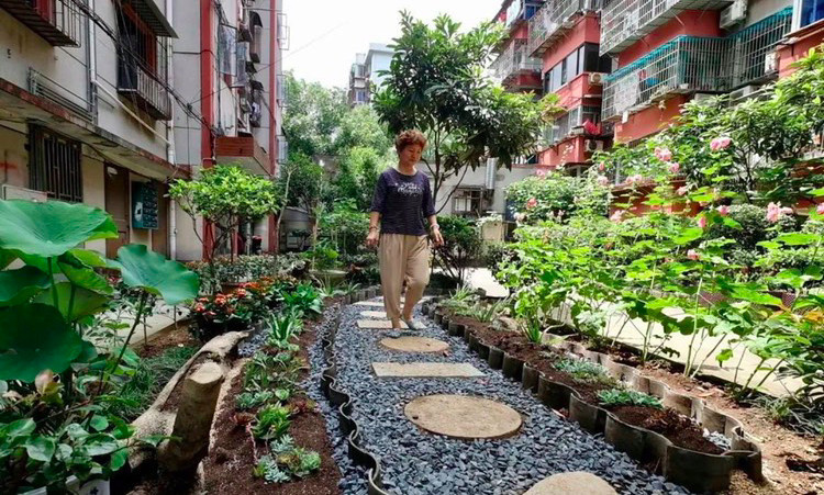 "Huangli neighborhood builds a ""green corridor."" Photo from http://nb.wenming.cn/"