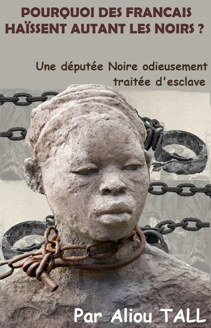 Une députée noire odieusement traitée d'esclave : pourquoi autant de haine ?