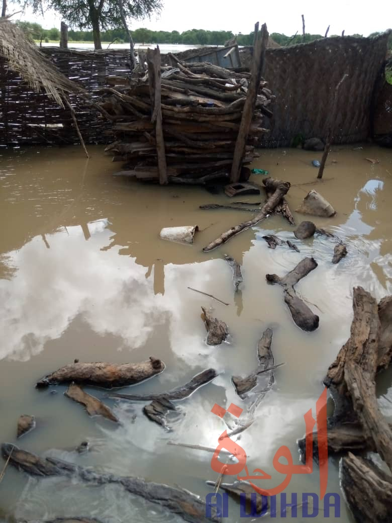 Des inondations à l'Est du Tchad. Illustration © Mahamat Issa Gadaya/Alwihda Info