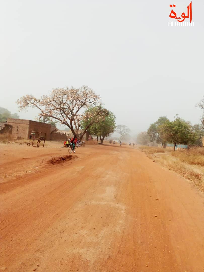 Une rue à Pala, au Mayo Kebbi Ouest. Illustration © Foka Mapagne/Alwihda Info