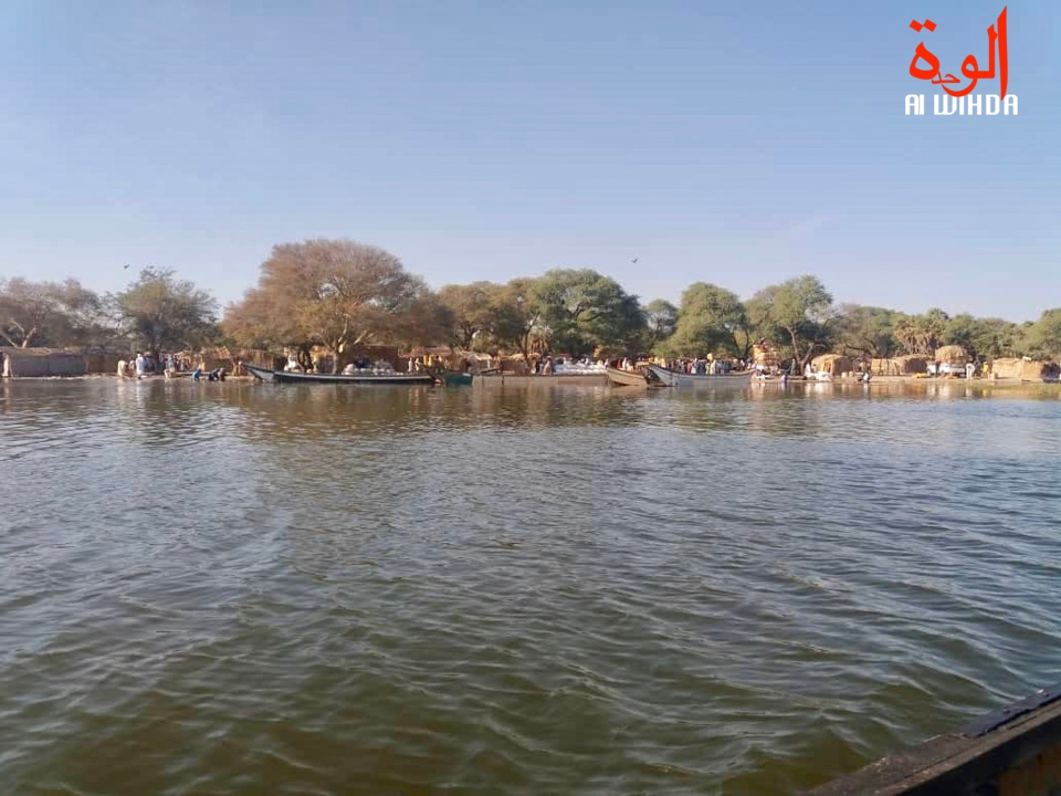 Les rives du Lac Tchad. © Alwihda Info