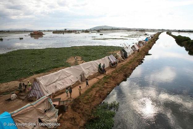 Rapport Greenpeace: L'intensification des événements météorologiques menace les plus vulnérables d'Afrique. © DR