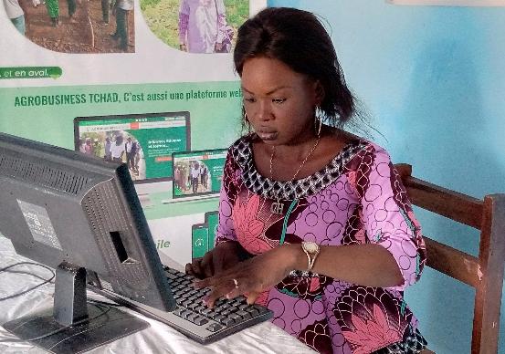 Journée de l'entrepreneuriat féminin au Tchad : la fête en différé à Moundou