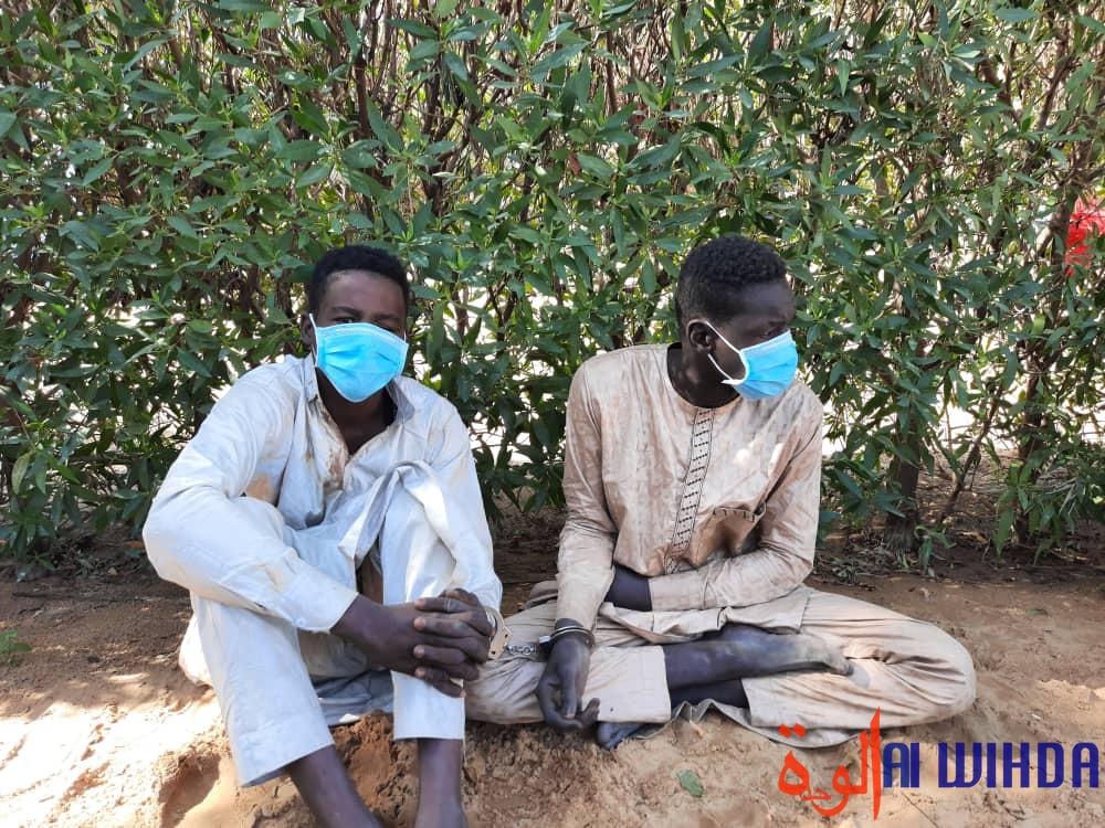 Tchad : la Police arrête 18 présumés malfrats dont trois femmes à N'Djamena