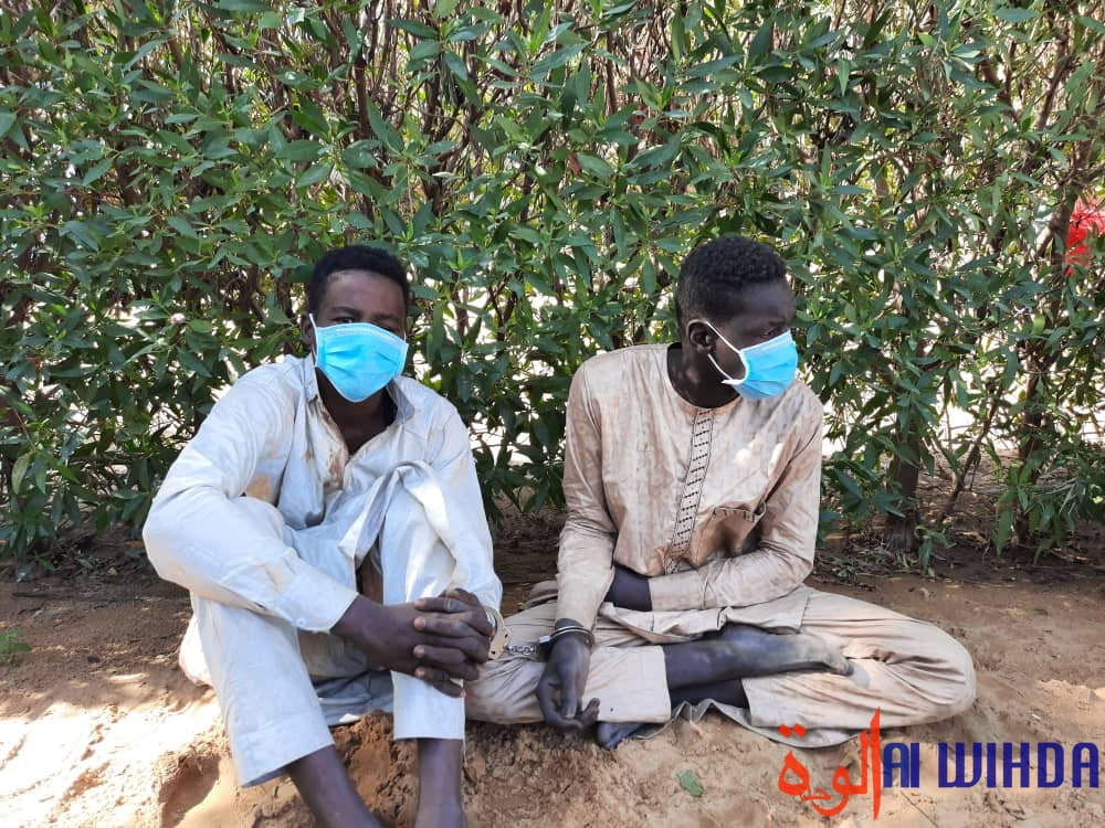 N'Djamena : démantèlement d'un réseau de brigands, les précisions de la police