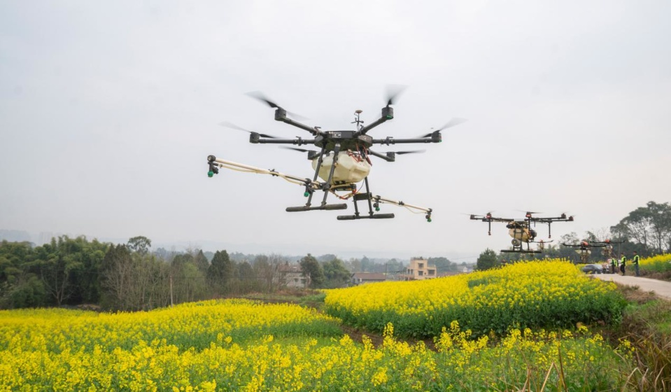 Two drones spray liquid fertilizer over a planting base of high-quality wheat in Huayuan town, Tancheng county, east China's Shandong province, Feb. 27, 2021. (Photo by Fang Dehua/People's Daily Online)
