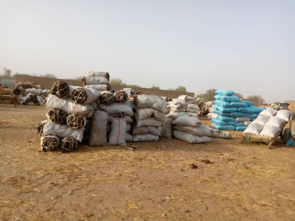 Tchad : la bouse de vache, un combustible très utilisé