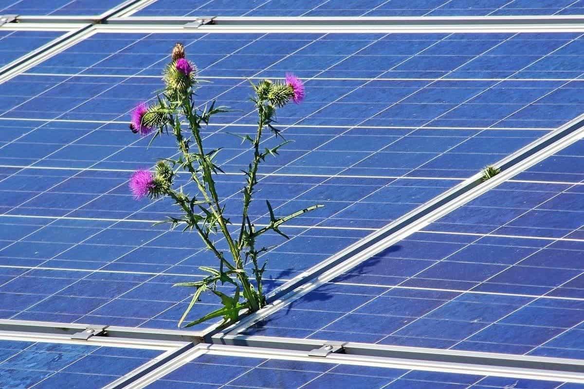 Transitions énergétiques : des perspectives de croissance pour l'économie mondiale