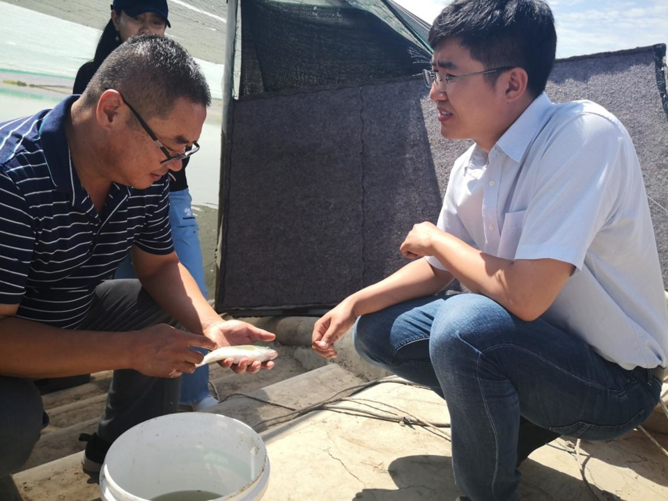 Wang Xujun, a fish farmer in Helan county, Yinchuan city, northwest China's Ningxia Hui autonomous region, consults Jin Haoxuan, a teacher who specializes in water environment management in Tsinghua University, about technical matters in the middle stage of fish cultivation. (Photo/Ningxia Daily)