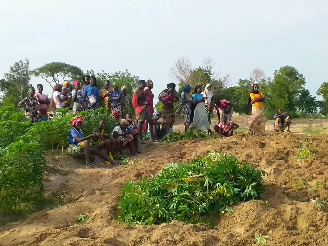 Tchad : vente de manioc, l'activité des jeunes vacancières