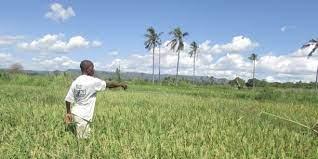 Togo : Lomé abrite un atelier régional sur le droit foncier communautaire en Afrique