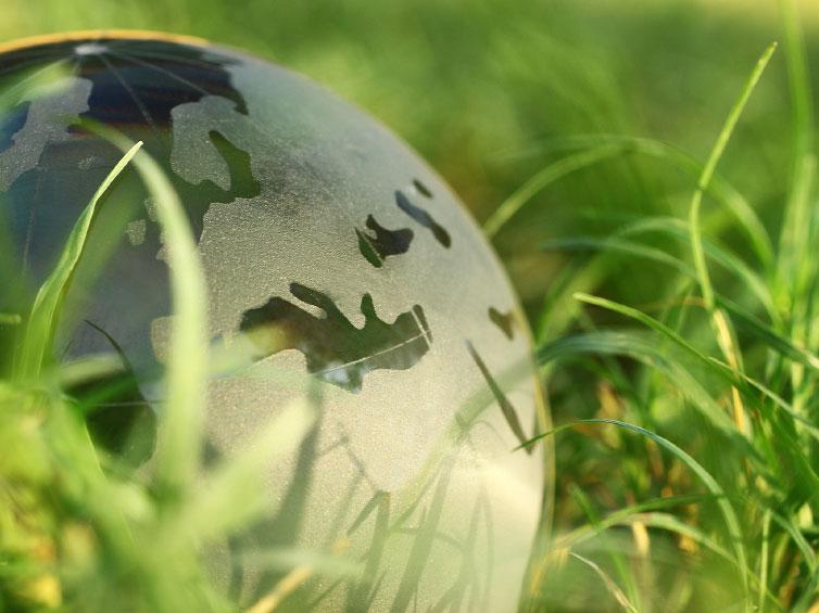 Tchad/Forum sur l'économie verte : Tiraillement entre politiques et patrons