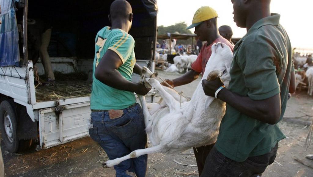 Tchad: la Tabaski au bonheur des clients