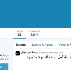 Le compte Twitter de Boko Haram supprimé