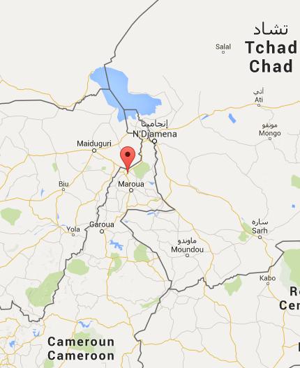 Cameroun : Deux membres d'un comité de vigilance tués par Boko Haram dans l'extrême-nord