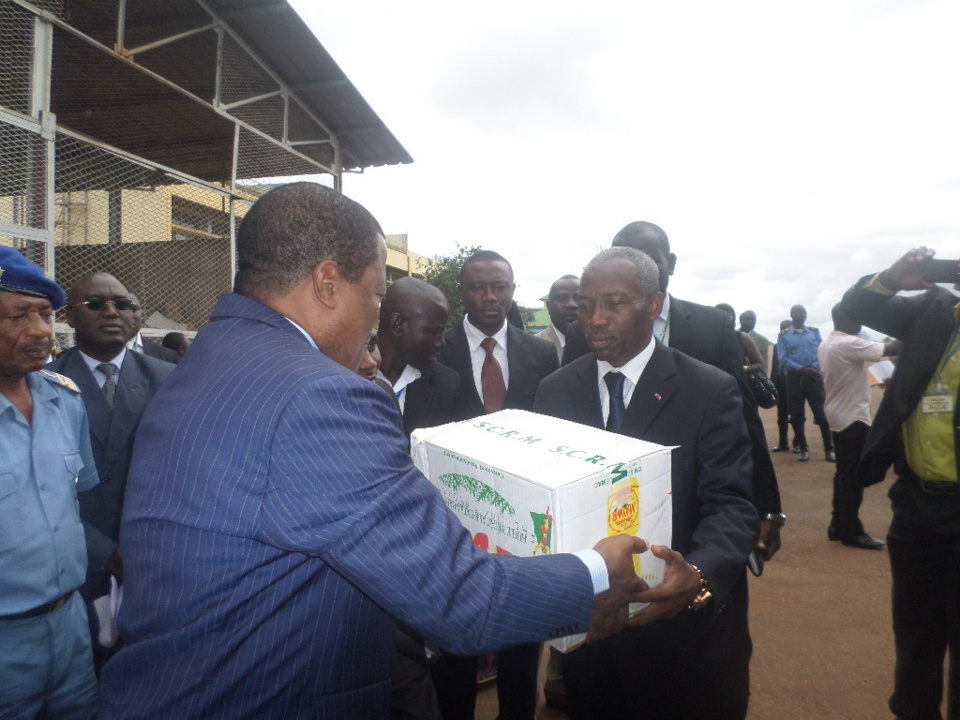 Lutte contre Boko Haram: L'effort de guerre de la diaspora camerounaise de Guinée-Equatoriale