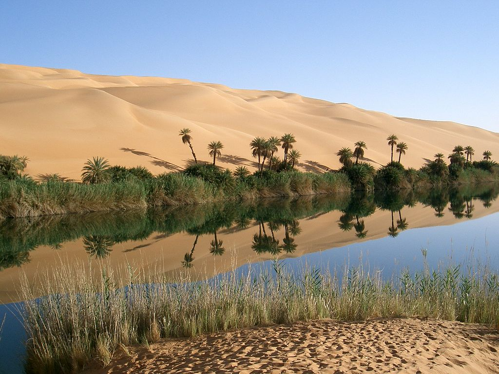 Oasis in Libya. Crédit photo : Sources