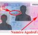 La commission du titre de séjour des étrangers :  Un organe trop peu saisi ?