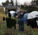 De faux réfugiés polisariens infiltrés à Bordeaux !