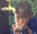 Après Malakona Adam, Noh Adaffana le suit : grande perte pour la lutte contre les maladies ravageuses au Tchad