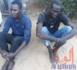 Tchad : les meurtriers d'une femme de 64 ans incarcérés à Amsinene