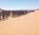 Tchad : le chef d'état-major des armées en mission à l'extrême Nord