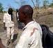 Tchad : dégâts environnementaux dans la réserve de Faune Binder-Léré