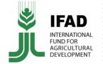 L'importation des denrées alimentaires nuit au continent, propos que le chef d'une institution de l'ONU tiendra aux leaders africains à Nairobi
