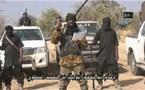 How Buhari, Swiss govt, Red Cross negotiated release of Chibok girls — Presidency