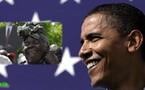 Au Kenya, la grand mère d'Obama fête la victoire de son petit-fils