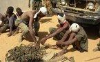 Tchad : Arrestation de malfrats opérant à N'Djaména , 52 armes récupérés par la police