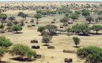 Darfour : L'attaque du gouvernement contre Kalma était contraire au droit international
